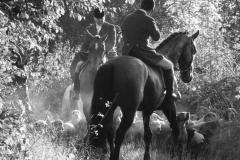 ward-union-hunt-history-gallery-06