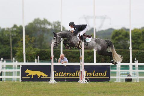 Tattersalls Ireland July Show – Good News Alert